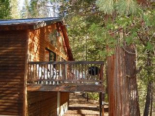 Perfect 3 bedroom Yosemite National Park House with Dishwasher - Yosemite National Park vacation rentals