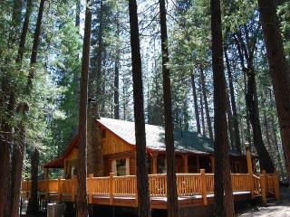 (79) Half Dome - Yosemite National Park vacation rentals