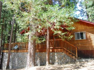 Perfect 2 bedroom Wawona House with Deck - Wawona vacation rentals