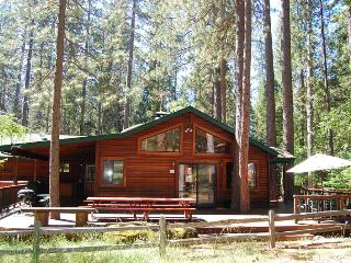 Beautiful House with Dishwasher and Television - Yosemite National Park vacation rentals