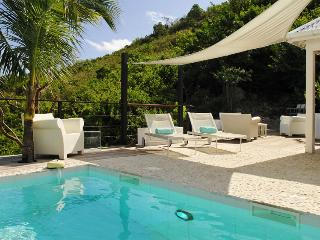 Nice Villa with Internet Access and Dishwasher - Flamands vacation rentals