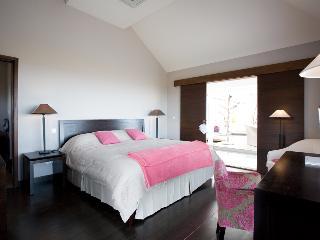 Villa Victoria - Saint Barts - Vitet vacation rentals