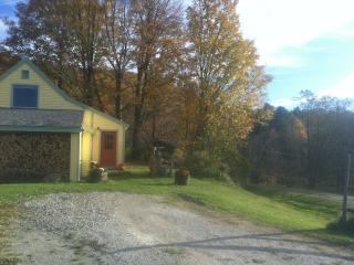 Bright 2 bedroom Cottage in Pawlet - Pawlet vacation rentals