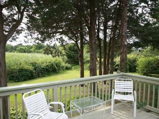 Charming 3 bedroom Vacation Rental in East Dennis - East Dennis vacation rentals