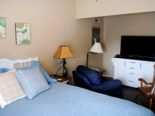 Family Suite near Lake Erie, Cedar Point, Oberlin - Amherst vacation rentals