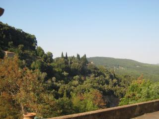 Tipico appartamento antico borgo - Costa toscana - Sassetta vacation rentals