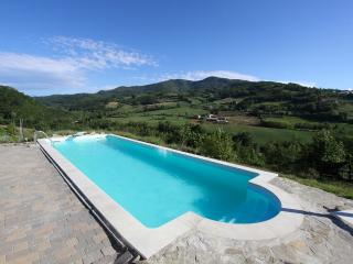 Valtidone Verde: a unique B&B in Northern Italy - Mornico Losana vacation rentals