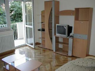 Apartment in Belgrade, Dedinje area - Belgrade vacation rentals