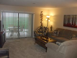 Nice Condo in Branson with Fitness Room, sleeps 6 - Branson vacation rentals