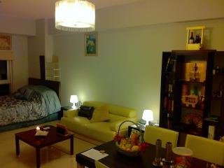 New condo @ Greenbelt Chancellor in Makati CBD - Makati vacation rentals