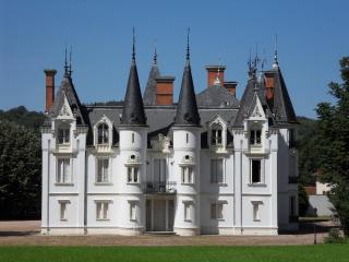cinderella castle in the centre of France - Villeurbanne vacation rentals