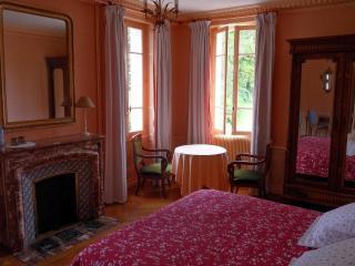 cinderella castle in the centre of France - Villeurbanne vacation rentals