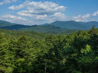Breath Away Chalet - Blue Ridge GA - Ellijay vacation rentals