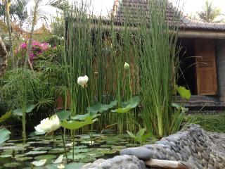 Kura Kura retreat, meet the real Bali. An authentic adventure, a family cottage or villa. - Suraberata vacation rentals