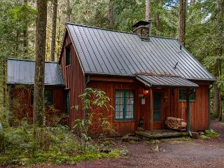 Vintage Cabin on Still Creek-Hot Tub-Book Now get 3rd night Free thru May 20 - Mount Hood vacation rentals