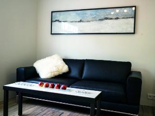 Modern apartment in a great location in Reykjavík - Reykjavik vacation rentals