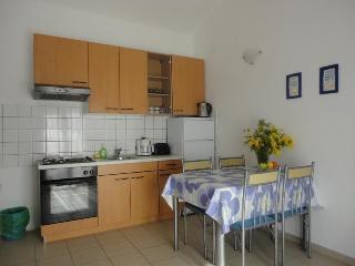 Apartment Petrcane great sea view!!! - Petrcane vacation rentals
