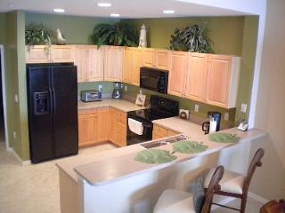Perfect Condo with Internet Access and Dishwasher - Clearwater vacation rentals
