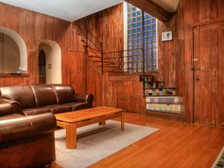 Chicago's Old Town, Amazing 2BDR Duplex Loft - Chicago vacation rentals