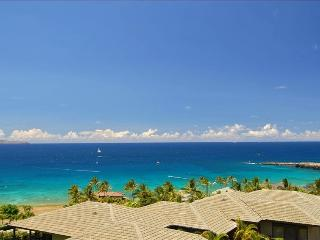 Gold Remodel + View View View View View - Kapalua vacation rentals