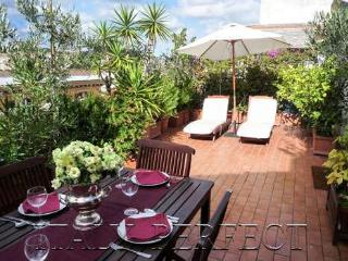 Perfect Luxury Penthouse-Huge Terrace-Bright Freso - Lazio vacation rentals
