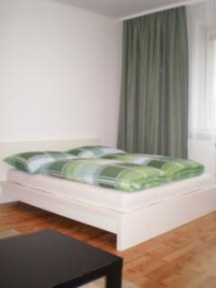 City Apartment in Vienna - Image 1 - Vienna - rentals