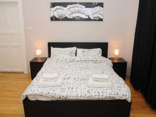 Nice Condo with Internet Access and Television - Budapest vacation rentals