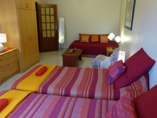 2 bedroom apartment in the center of Lisbon - Lisbon vacation rentals
