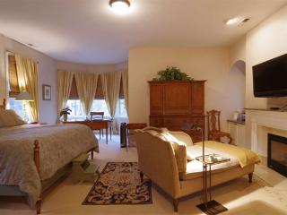 Luxurious Bed and Breakfast in Oak Park, IL - Lemont vacation rentals