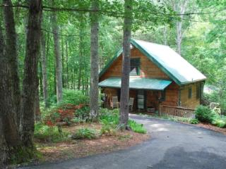 Peak Creek Cozy Cabin_Creek_Pet Friendly_Hot Tub_WiFI_Family Friendly_Private_Wooded Setting - Jefferson vacation rentals
