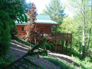 Autumn Mist-Trout Stream_4.5 acres_hot tub_pool table_near Boone/West Jefferson_wifi_pets_ - Blue Ridge Mountains vacation rentals