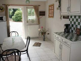A quiet place in Anjou near the Loire river - Vauchretien vacation rentals