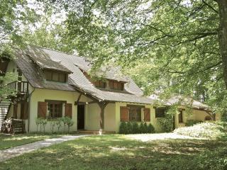 La Grande Baudonniere - 140km from Paris - Chemille Sur Indrois vacation rentals