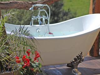 ROSEBUD COTTAGE - ROMANCE -MIDWEEK SPECIALS! - Auckland vacation rentals