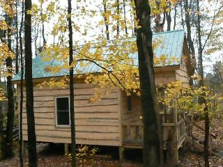 GREAT CABIN,SALMON FISHING & OUTDOOR RECREATION - Redfield vacation rentals