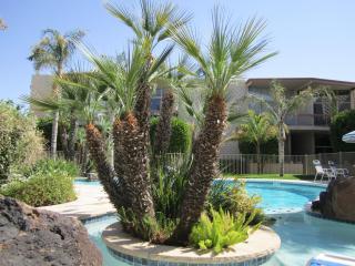 Mid Century Modern Apartment in Central Phoenix - Phoenix vacation rentals