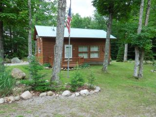 Charming Cabin with Deck and A/C - Old Forge vacation rentals