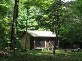 Woodland retreat - cabin near Oneida Lake - Taberg vacation rentals