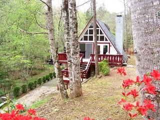 Family Mountain Getaway - 2 BR/2 BA Private Cabin Easy Access - Robbinsville vacation rentals