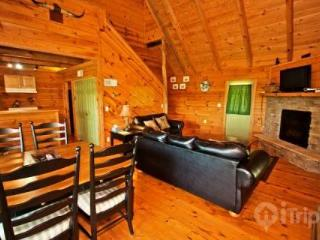 Townsend Cabin #4, Rich Mountain View - Blount County vacation rentals