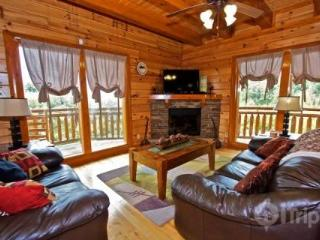 Best Little Pool House in the Smokies - Sevier County vacation rentals