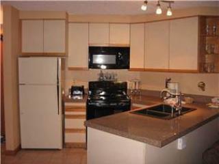 Iron Horse Resort 3084 - Image 1 - Stanley - rentals