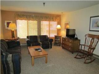 Snowblaze Condominiums 301 - Image 1 - Winter Park - rentals