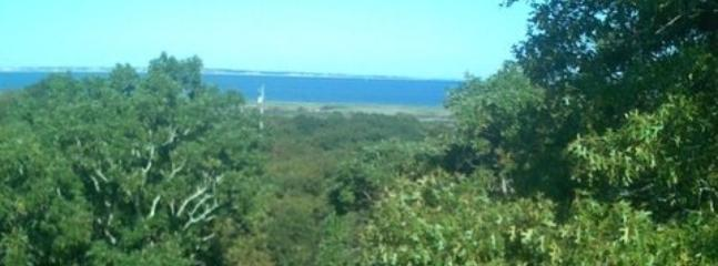 Tranquil setting with views of Vineyard Sound and the Elizabeth Islands - Aquinnah - Vineyard Up-Island Spot - Waterviews - Gay Head - rentals
