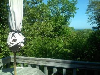 Aquinnah - Vineyard Up-Island Treehouse - Waterviews - Gay Head vacation rentals