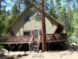 Family Cabin, 3D TV, Hot Tub! No Cleaning Fee. - Yosemite Area vacation rentals