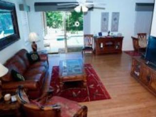 Fantastic themed 4 bedroomed villa-ideal location - Davenport vacation rentals