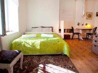 A dream vacation in Jerusalem - Jerusalem vacation rentals