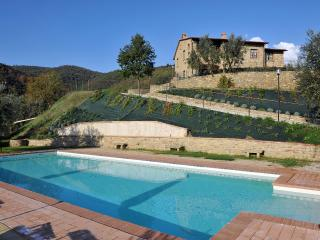 Villa Galileo - Lippiano vacation rentals