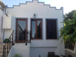 Holidays Villa in Prince Island at Istanbul - Istanbul vacation rentals